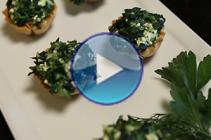 VIDEO_miniSpanikopitaThumb